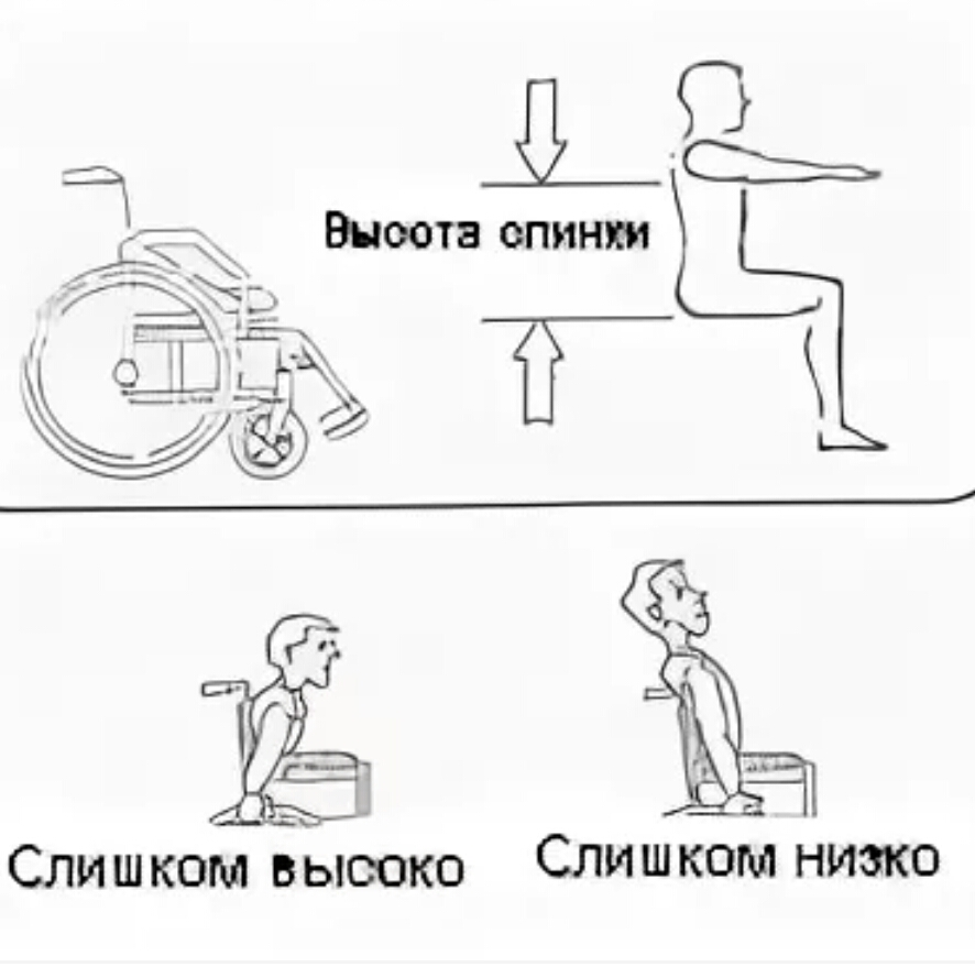 Выбор высоты спинки кресло-коляски
